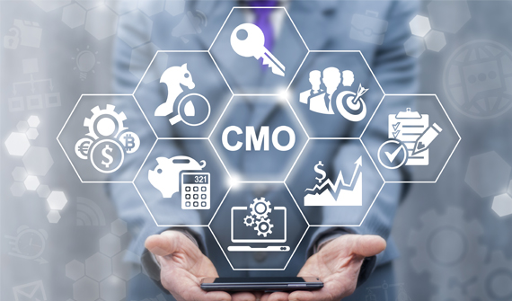 Virtual CMO Engagements